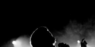 Father John Misty's Silhouette