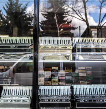 Accordions For Sale