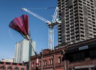Crane Over Large Umbrella