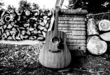 Guitar, Firewood, Incinerator