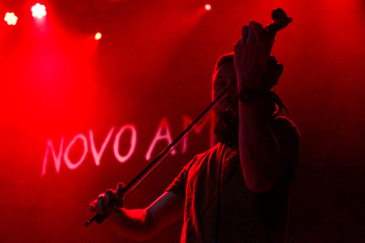Novo Amor Fiddler